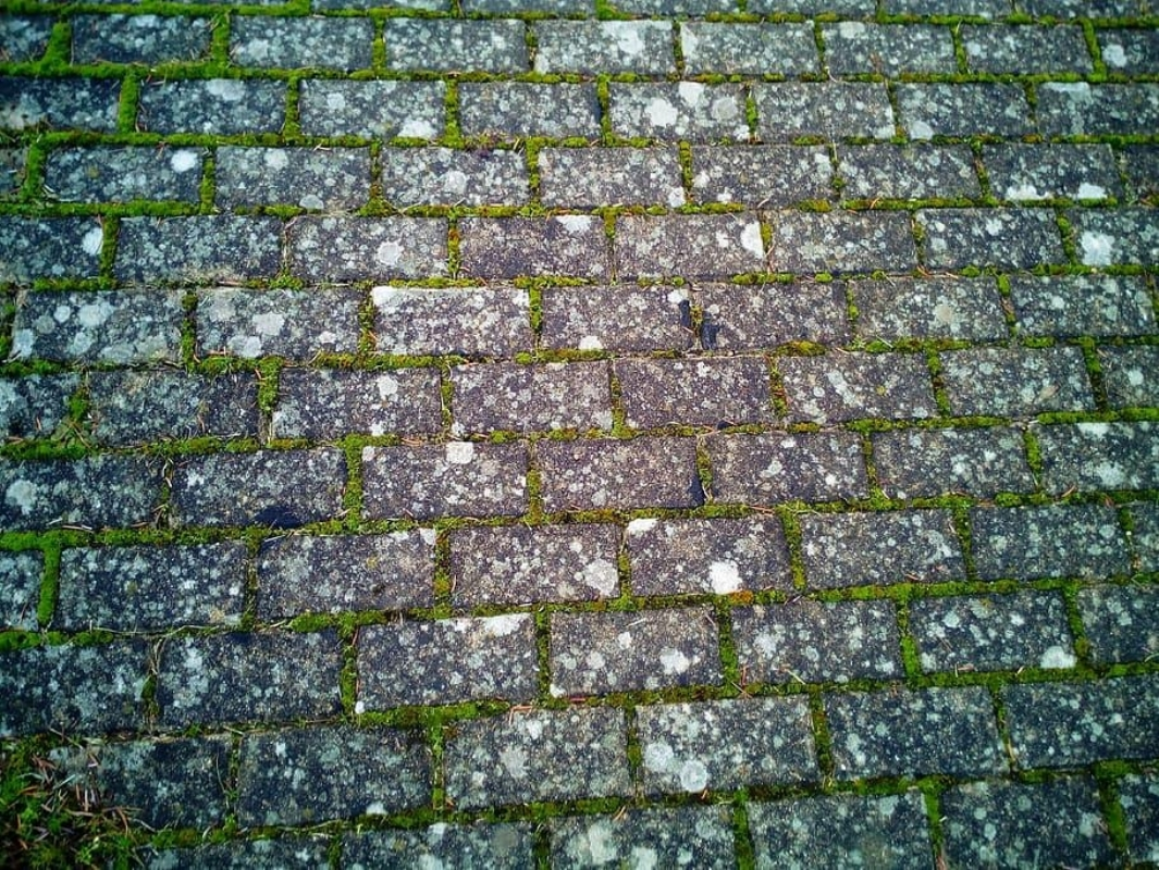 Resin Bound driveways vs Traditional block paving - the benefits